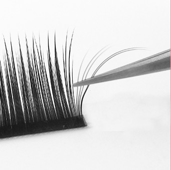 Magic Volume Lashes | D-Curl | 0,05 mm dick | 10 mm lang