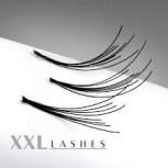 1200 Flare Lashes in der Sortimentsbox   C-Curl   6D-8D