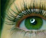 Farbige Wimpern